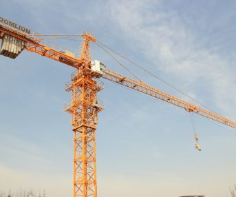 Tower cranes on rental